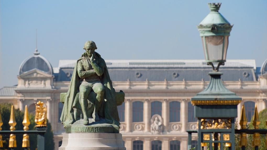 Statue de Lamarck au Jardin des Plantes