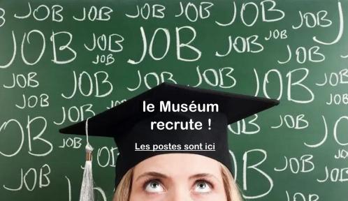 jobs-3.jpg