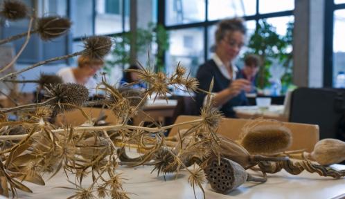 Cours de dessin au Muséum national d'Histoire naturelle